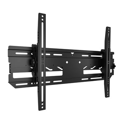 Chief Tilting Outdoor Wall Mount